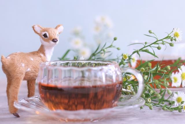 むくみ改善 お茶