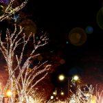 表参道イルミネーション2016 車で行く方法やクリスマスの混雑は?